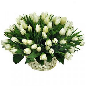 Корзина 101 белый тюльпан