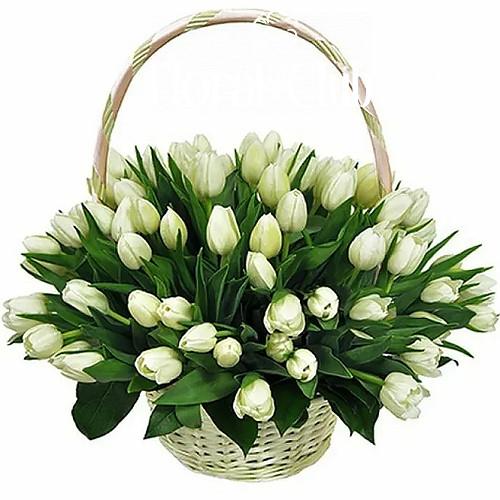 Корзина 51 белый тюльпан