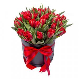 25 красных тюльпанов в шляпной коробке