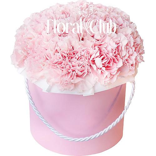 25 розовых гвоздик в шляпной коробке