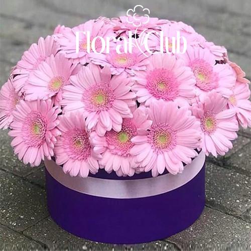 29 розовых гербер в шляпной коробке