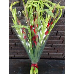 Букет 15 красных и белых гладиолусов