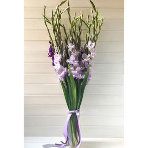 Букет 15 фиолетовых гладиолусов