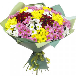 Букет 19 разноцветных хризантем
