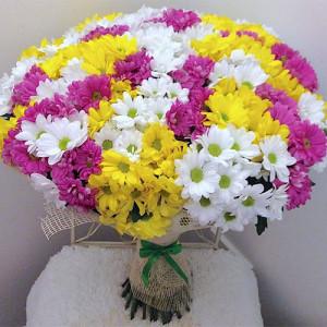 Букет 35 хризантем Микс
