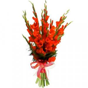 Букет 9 оранжевых гладиолусов