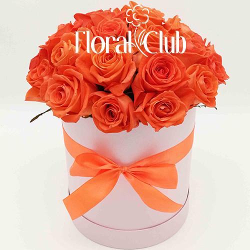 19 оранжевых роз в шляпной коробке