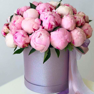 19 розовых пионов в шляпной коробке