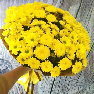 Букет 15 желтых хризантем