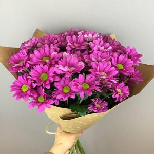 Букет 5 розовых хризантем