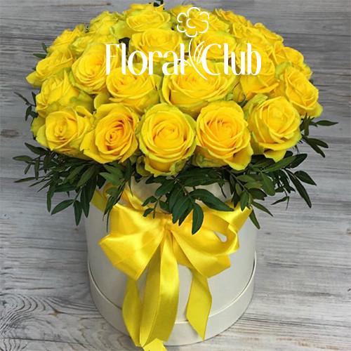 25 желтых роз в шляпной коробке