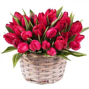 25 красных тюльпанов в корзине